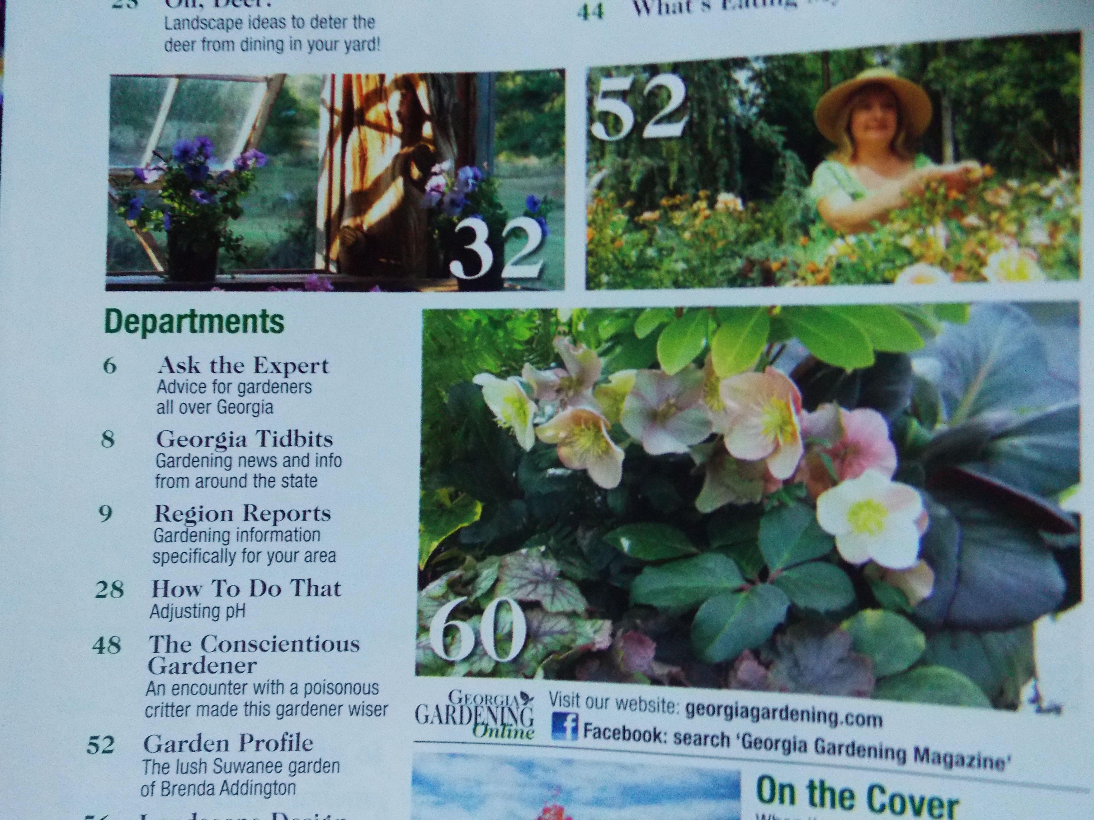 The graceful gardener a dream come true for the graceful httpstatebystategardeningga fandeluxe Images