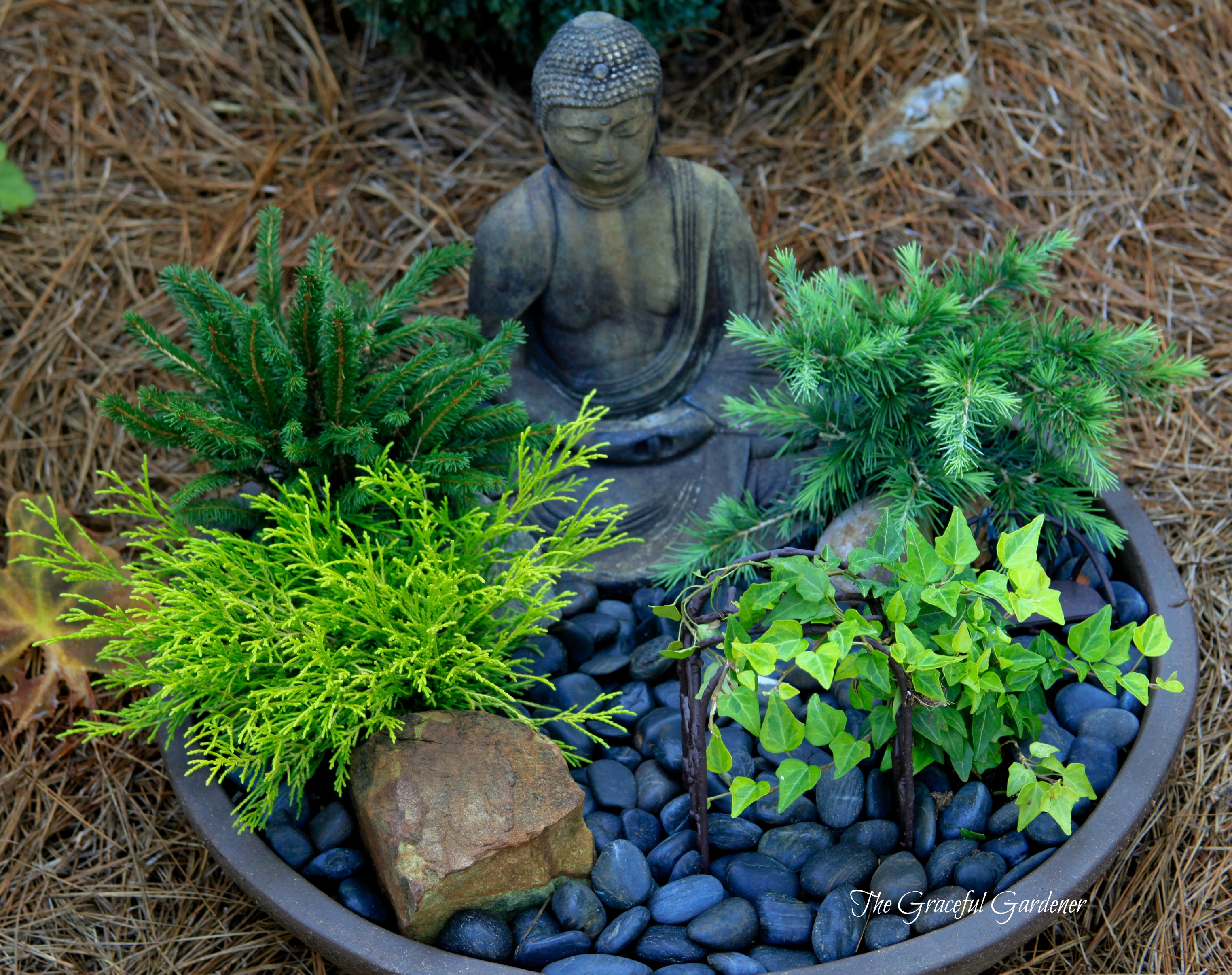 The graceful gardener miniature container gardening for Mini zen garden designs