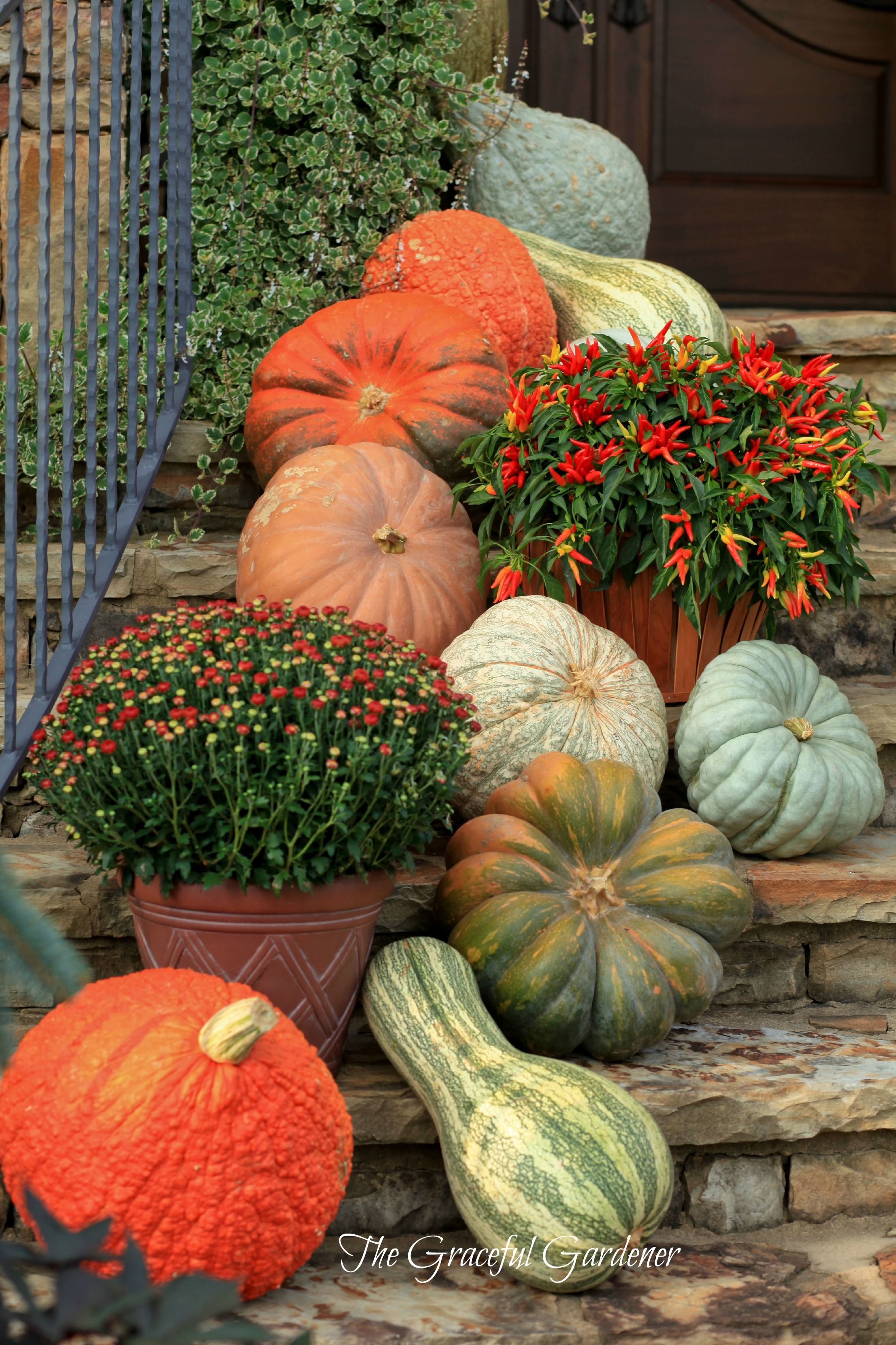 The graceful gardener decorating with pumpkins Fall outdoor decorating with pumpkins