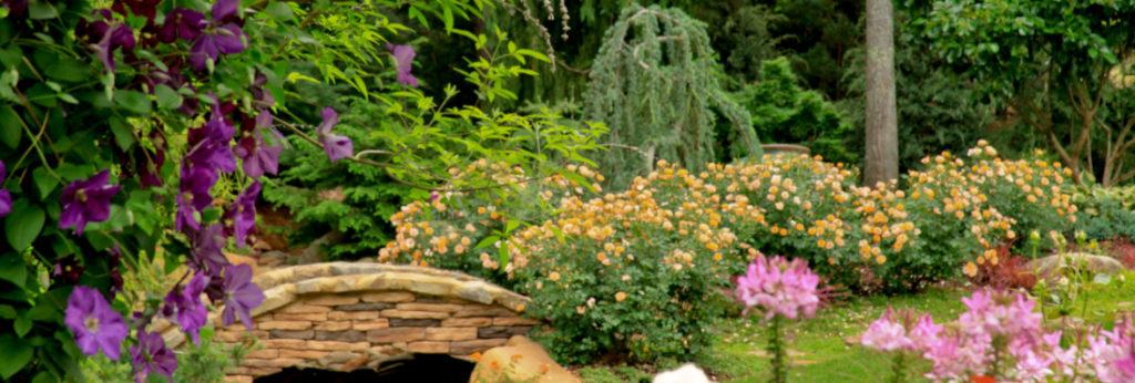 The Graceful Gardener