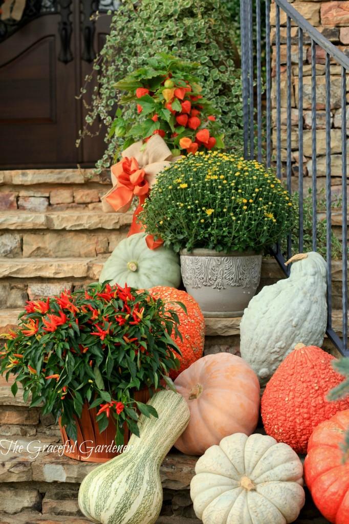 pumpkinspill