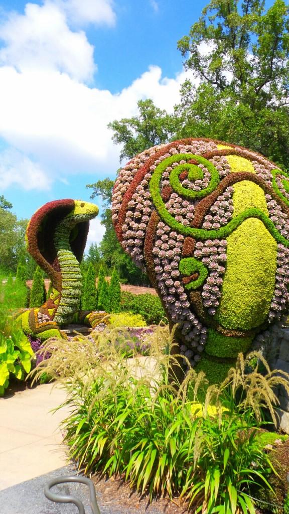 The Giant Cobra 4